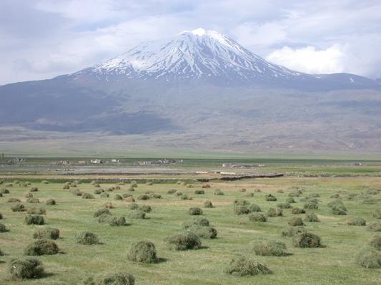 Berg Ararat 400