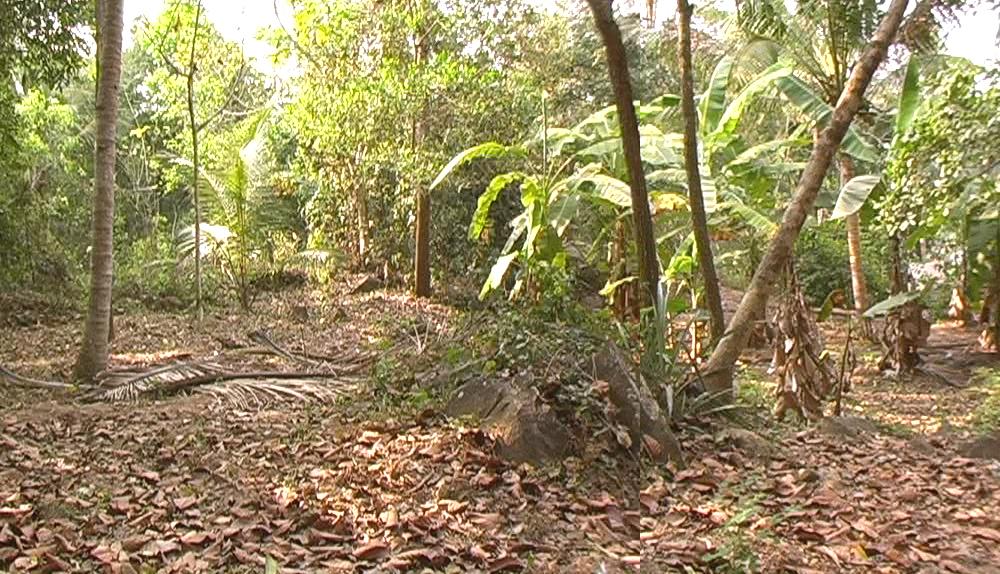 10 cents land in Kudappanakunnu, Kailas lane 26, Trivandrum a