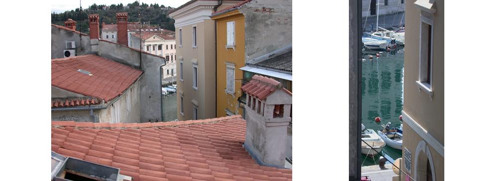 Dach & Blick vom Salon
